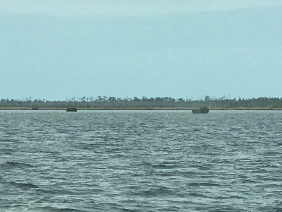 Alligator River mini islands