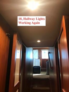 Repaired Halogen Lights